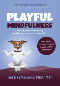 Playfull Mindfullness - Ted DesMaisons